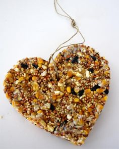 heart shaped bird feeder.... Santos this is a cooler project for you and Gabi