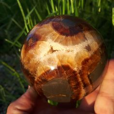 Items similar to Rare Septarian Geodes Septarian Stone, Dragon Skin, Yellow Calcite, Flawless Beauty, Calcite Crystal, Organic Matter, Patterns In Nature, Fossils, The Expanse