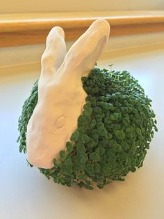 BUNNY As the title suggests, I'm making chia pets with my Studio Art class. We started off with quick pinch pots to get a feel for the clay and moved right into chia pets. Here is my example pre-se… Clay Projects For Kids, Kids Clay, School Art Projects, 3d Art Projects, Class Projects, Kids Crafts, Sculpture Projects, Ceramics Projects, Sculpture Art