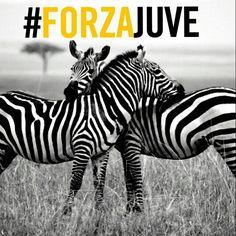 #ForzaJuve