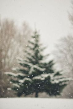 15.+snow+day+habituallychic.jpg 499×750 pixels