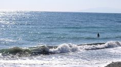 Surf Condition 120204-12:00