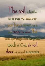 Image result for poster showing the importance of conserving the soil