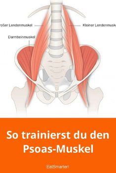 This muscle is small, but in our body, an important function. How you train him, shows Professor Dr. Ingo Froböse of the German sport University Cologne. Fitness Workouts, Sport Fitness, Yoga Fitness, Muscle Fitness, Muscle Men, Slimming World, Herbal Remedies, Natural Remedies, Ingo Froböse
