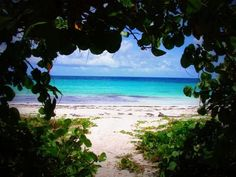 Vieques, where my hubs and I went on our honeymoon.