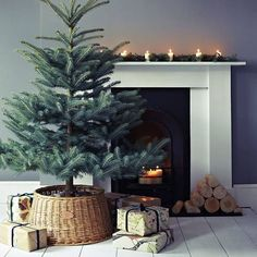 simple winter beauty - my ideal home...