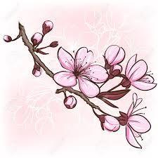 Resultado de imagen de flor de cerezo dibujo blanco y negro