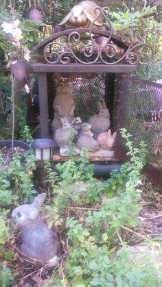 The bunnies of Ginny's Enchanted Garden