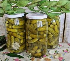 Pickled Cucumbers – Seafood Recipes – Pratik Hızlı ve Kolay Yemek Tarifleri Seafood Appetizers, Seafood Dishes, Seafood Recipes, Stir Fry Recipes, Snack Recipes, Pickling Cucumbers, Food Tags, Most Delicious Recipe, Food Words