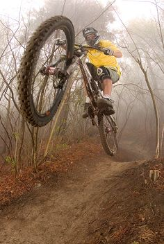 MISTY MOUNTAIN DOWNHILL: Photo by Photographer Lars Scharl. http://WhatIsTheBestMountainBike.com