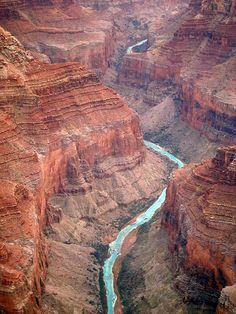Grand Canyon, one more year!!!! counting down the days