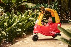 Navidad 2017, sesión de fotos navideña. Photoshoot baby boy. #monkey #photography #bebe #babyboy #fotografia #navidad #merrychristmas