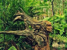 Sculpture in the forest.