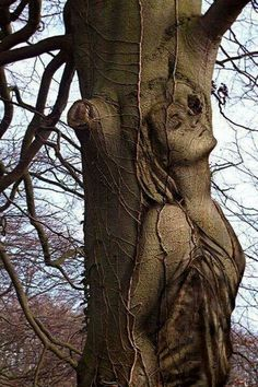 Amazing art sculpture in a tree Tree Carving, Carving Wood, Belle Photo, Mother Earth, Urban Art, Amazing Art, Amazing Body, Beautiful Body, Fantasy Art
