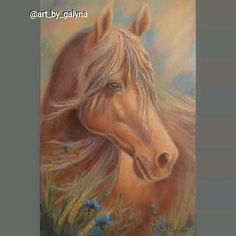 Horse Canvas Painting, Horse Art, Horse Head, Portraits From Photos, Celebrity Drawings, Most Beautiful Animals, Oil Portrait, Art Oil, Art Sketches