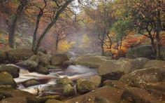 Fotograf Padley Gorge von James Mills auf 500px