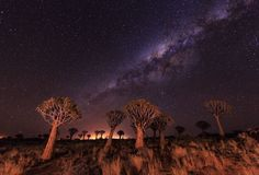 Namibia under the stars Photo by Yi Sun — National Geographic Your Shot