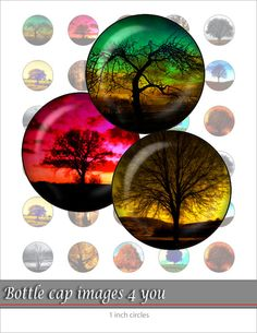 Lonely tree  Digital Collage Sheet 1 inch by BottleCapImages4you, $1.00