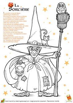 Coloriage halloween pour enfants, dessin d'une sorcière avec son balai, chat et un hibou