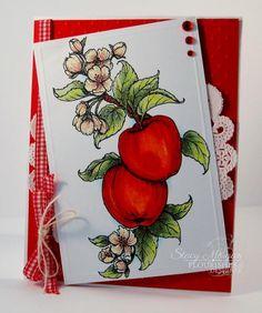 WCMDFLLCCorner Washington Apples