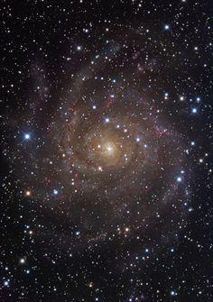 Universo Mágico: Galaxia espiral IC 342