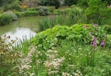 Bog Gardens. www.garden-design.me