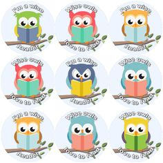 <p>These Reading Owls Themed reward stickers are perfect to make a big impression on young learners and can be used with any Reward System or for personalising stationary or party bags.</p>