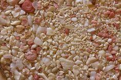 """Sable de corail - Sandatlas  """"Cet échantillon de sable est des Bermudes. Rose foraminifères rubrum Homotrema donne la couleur rose pour les plages des Bermudes. Les coraux sont de couleur claire, mais ne sont pas tous les morceaux de fragments de récifs coralliens. Mollusques, d'autres espèces foraminifères, et même les échinides (oursins colonne vertébrale en bas à gauche) sont également présents. Largeur de vue 32 mm."""""""