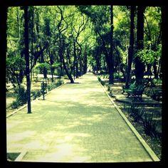 Mexico DF Parque España