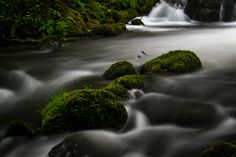 Rushing River Long exposure shot of the rapids in a small river in Fana Bergen Norway August Long Exposure, Bergen, Norway, Waterfall, Shots, River, Nature, Photography, Outdoor