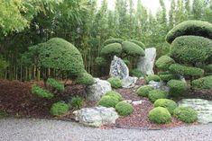 landscaping with rocks - Bing images River Rock Landscaping, Mulch Landscaping, Landscaping Supplies, Tropical Landscaping, Landscaping With Rocks, Japanese Tree, Japanese Gardens, Rock Garden Design, Yard Design