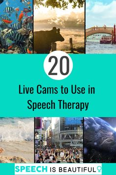 """Do you need creative teletherapy activities for students? Well, right now I'm obsessed with live cams on YouTube. if you have a laptop, you could definitely use this during in-person speech therapy too But before I go any further, I should define what a """"live cam"""" is. A live cam is a webcam placed somewhere by an individual or an organization in a location all over the world and the webcam then live-streams whatever is right in front of them."""
