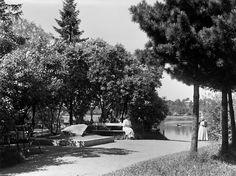 Kaisaniemen puisto ja Vapaamuurarin hauta Valokuvataiteen museo I. K. Inha 1908.
