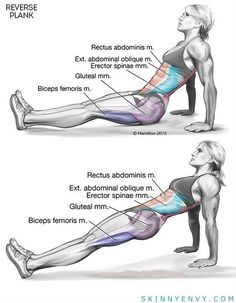 Tighten Your Core, Triceps AND Lower Body With Reverse Planks! VISIT skinnyenvy.com for more! #abs #triceps