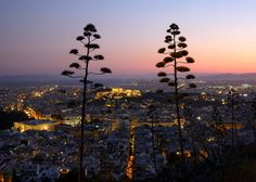 Athens night view from Lycabettus Hill, Greece. Places Around The World, Oh The Places You'll Go, Great Places, Places To Travel, Places To Visit, Around The Worlds, Beautiful World, Beautiful Places, Athens Greece