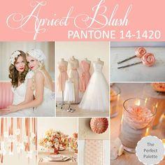 {PANTONE Palette}: Apricot Blush 14-1420. http://www.theperfectpalette.com/2013/01/pantone-palette-apricot-blush-14-1420.html