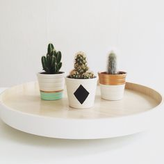 DIY painted mini cactus pots