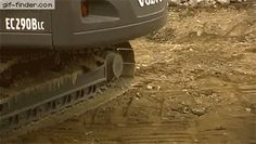 Baby excavator hatching in it's natural habitat   Gif Finder – Find and Share funny animated gifs