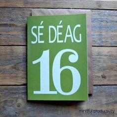 16  Sé Déag card  Irish language number card Cártaí as Gaeilge