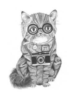 """Snappy Tom"" by Kirbee Lawler #cat #art #drawing"