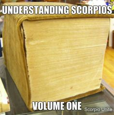 And to all the other signs out there xD Scorpio Zodiac Facts, Scorpio Traits, Scorpio Horoscope, Scorpio Quotes, My Zodiac Sign, Pisces, Scorpio Funny, Scorpio Humor, Gemini Compatibility