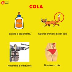 COLA means glue, tail, queue and butt in Spanish.