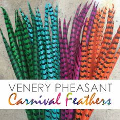 We Cater to Carnival Buyers Los Angeles and NYC Showrooms ! Dyed Venery Pheasant Tail Feathers for your . Pheasant Feathers, Carnival, Nyc, Costume, Fancy Dress, Costumes, New York City, Costume Dress