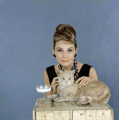 Audrey Hepburn & No Name Slob