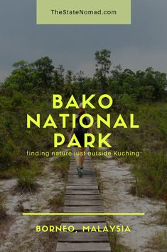 Just outside of the city of Kuching in Borneo is the exciting Bako National Park - perfect for those seeking an adventure in Borneo's nature. Take a look here to find out more. Travelling Tips, Travel Tips, List Of Animals, Park Around, Look Here, Adventure Travel, How To Find Out, The Outsiders