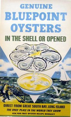 Blue Point Oyster  poster by Kotula