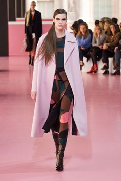 A look from Christian Dior's fall 2015 collection.