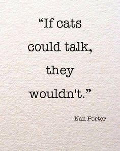 Katten kwaad