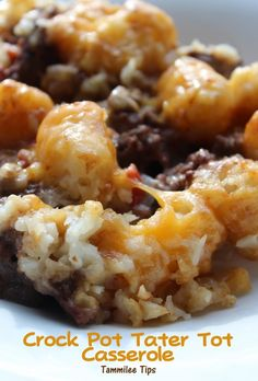 Crock Pot Tater Tot Casserole  Ingredients 1 pound ground beef, browned 1 can RoTel, We used mild but you could easily use a hotter variety 1 16oz package of frozen Tater Tots (I bought a 5 pound bag because they were cheaper and just covered the top of the crock pot with them) 1 can Cream of Chicken Soup 1 small onion 2 cups cheddar cheese, shredded