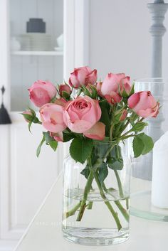 Bouquet of pink rose buds